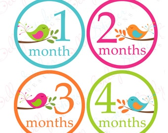 Girl Monthly Baby Stickers, 1 to 12 Months, Monthly Bodysuit Stickers, Baby Age Stickers, Sweet Birds   (029-2)