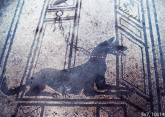 Beware of Dog, Pompeii, Italy - Travel Photography Print, Ancient Art Mosaic Home Decor Wall Art