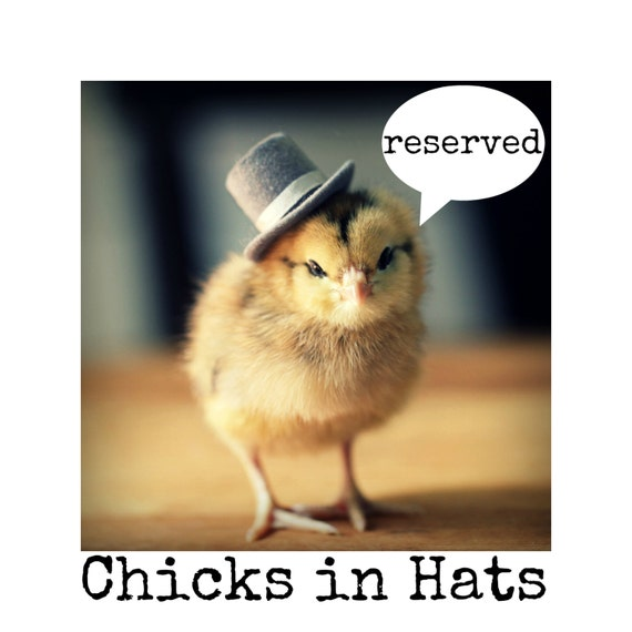 Reserved for bridgetleroy Chicks in Hats Variety Mix of Happiness Postcard Set