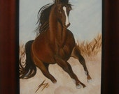 Wild Brown Horse  - Framed Original Painting - Introductory SALE price