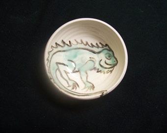little Iguana bowl