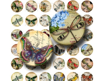 99 Cent Sale - Butterflies and Dragonflies - Digital Collage Sheet  - 1 inch Round Circles - INSTANT DOWNLOAD