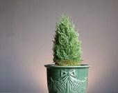 Green Flower Pot with Saucer