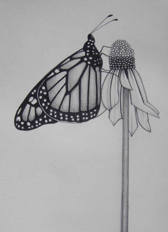 Matita art farfalla abbracciando un fiore in bianco e nero for Disegni di fiori a matita