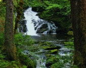 Alaska Art Photography • Waterfall in the Forest • 8x10 - 20x30 • Fine Art Print Also Available on Gallery Wrapped Canvas