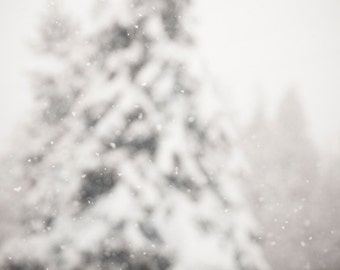 Snow Photography, Impressionist Art, White Winter Dreamy Photography, Christmas