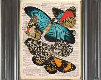 Butterfly collage wall art print on dictionary or music COUPON SALE Vintage Dictionary art print Music page print Digital art print No. 492