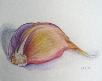 Garlic Clove, original still life watercolour painting