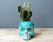 Turquoise Blue Skull Planter - perfect for cactus succulent or air plant