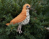Wood Thrush Felt Bird Ornament,embroidered, Home Decor