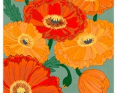 Bold Poppies - 9x12 archival print