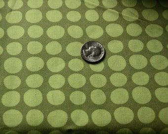 Amy Butler - Love Collection - Sun Spots - AB46 Olive - One yard