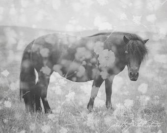 Fine Art Photograph, Double Exposure Photo, Black and White Art, Horse Photo, Flowers, Wall Art, Pony, Nature Art, Equestrian, Horse Art