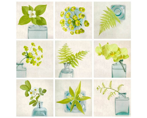 Botanical Print Set, Photography Set, Green Wall Art, Floral Photo Set, Botanical Art Prints, Photo Collection, Gallery Wall Art Set