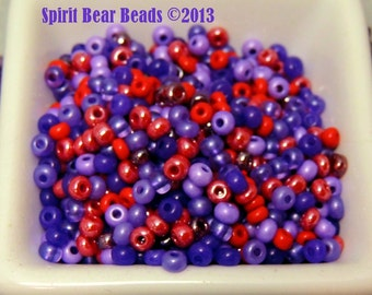 Red Hat Mix Red and Purple Czech Glass seed bead mix size 6