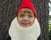 Gnome Beard/Hat Costume