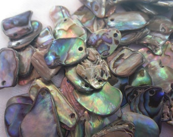 Abalone Shell Small Tumbled Freeform Drilled Chips 20 Pieces