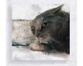 Cat Art -  Cat Print - Miki Cat Canvas Print  on 5x5  Art Block - Against Animal Testing - Children's Room Decor - Nursery Wall Art