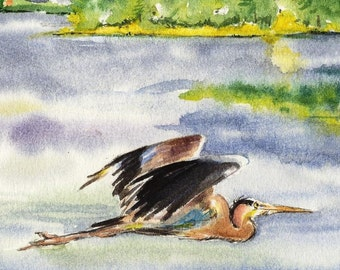8x10 Great Blue Heron Bird Cottage Lake House decor watercolor art print by Barry Singer