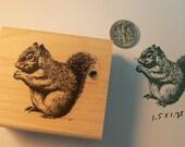 Squirrel rubber stamp P34
