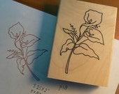 calla lily rubber stamp WM P18