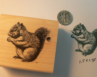 Squirrel rubber stamp P34