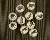 10pcs handmade assorted wild animals  round clear glass dome cabochons / Wooden earring stud 12mm (12-0169)