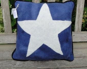 Wet Felted Star Pillow