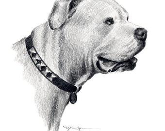 Alapaha Blue Blood Bulldog Art Print Signed by Artist DJ Rogers