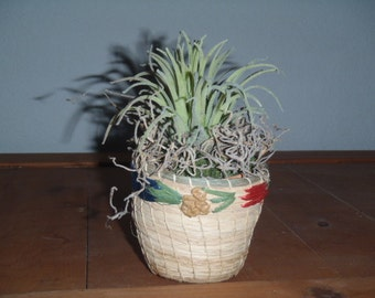 Faux Air Plant in Mini Straw Basket