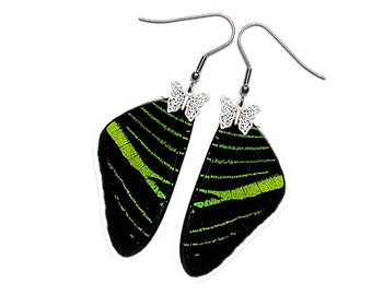 Real Butterfly Wing Earrings (Urania Leilus FW - E181)