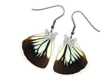 Handmade  Real Butterfly Wing Earrings (Pareronia Boabera Hindwing  - E201)