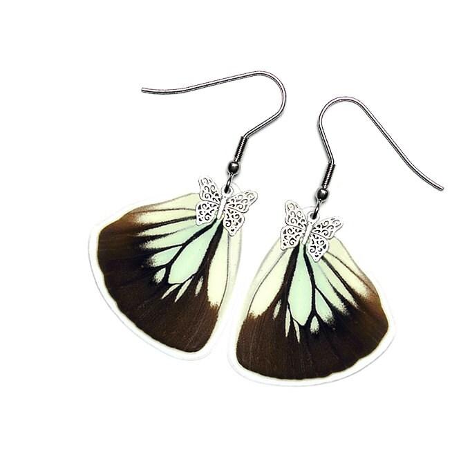 Handmade Real Butterfly Wing Earrings Pareronia Boabera