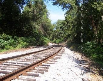 Railroad Track Greeting Card(s)