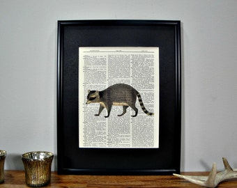 FRAMED Vintage Dictionary Print - Woodland Series - Racoon