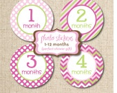 Baby Monthly Photo Sticker Designs, Digital DIY File