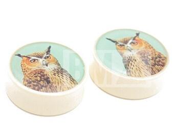 "3/4"" (19mm) Vintage Owl BMA Plugs Pair"