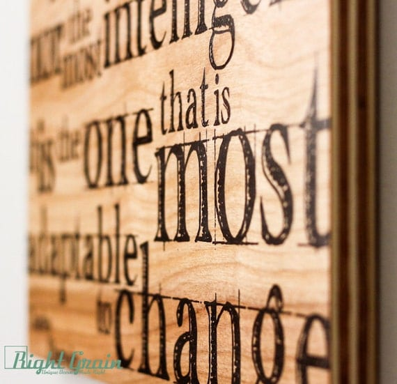 Inspirational Darwin Wall Quote Print On Wood Grain By