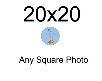 Get any Square Photography Print as a 20x20 inch print, Dreamy Nature, Animal Photos, Portraiture, Modern Home Decor