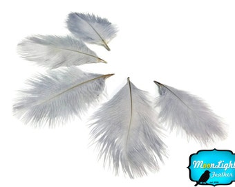 Mini Ostrich Feathers, 1 Pack - GREY Ostrich Small Confetti Feathers 0.3 oz : 3263