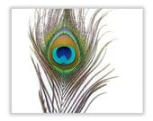 Oversized Peacock Feather Canvas Wrap, Modern Teal Green Wall Art, Home Decor, Custom Sizes, Gallery Wrap, Photograph, Colorful