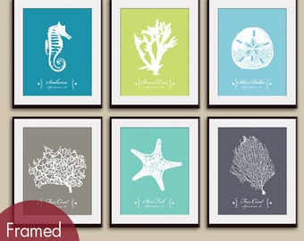 Underwater Sea Coral  (Series A2) Set of 6 - Art Prints (Atlantic, Kiwi, Maliblu, River Rock, Robins Egg and Gravel)