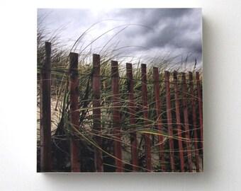 Beach Fence, Grass, Clouds, 6X6 Wood Panel, Landscape, Fine Art Nature Photography, Wall Art, Shelf Art, Ready to Hang