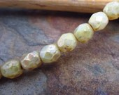 Champagne Picasso Faceted Firepolished 4mm Czech Glass Beads