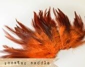 50 pcs+ - ORANGE - Rooster Saddle feathers - 2 inch strip - two-tone, pointy tip, shiny feathers, exotic feathers (RS005)