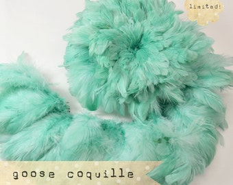 40-50pcs - SEAFOAM GREEN - Vogue Goose Coquille Feathers - silky, satin, airy, soft feathers - LIMITED (016)