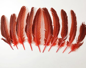 10pcs Guinea Fowl Quill Feathers, Polkadot Feathers- Red
