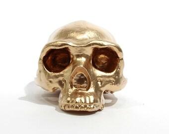 BLING! Homo erectus gold skull