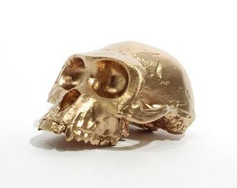 BLING! Ardi gold skull