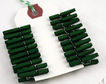 Green Clothespins, Hand Dyed Mini Clothespins, 3 sizes, Pantone Emerald Green, Tag Clips, Photo Clips, Bag Clips, Wish Tree Clips